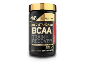 OPTIMUM NUTRITION GOLD STANDARD BCAA – FRUIT PUNCH