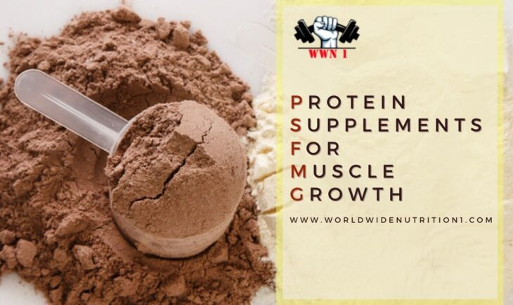 best protein supplements for muscle growth
